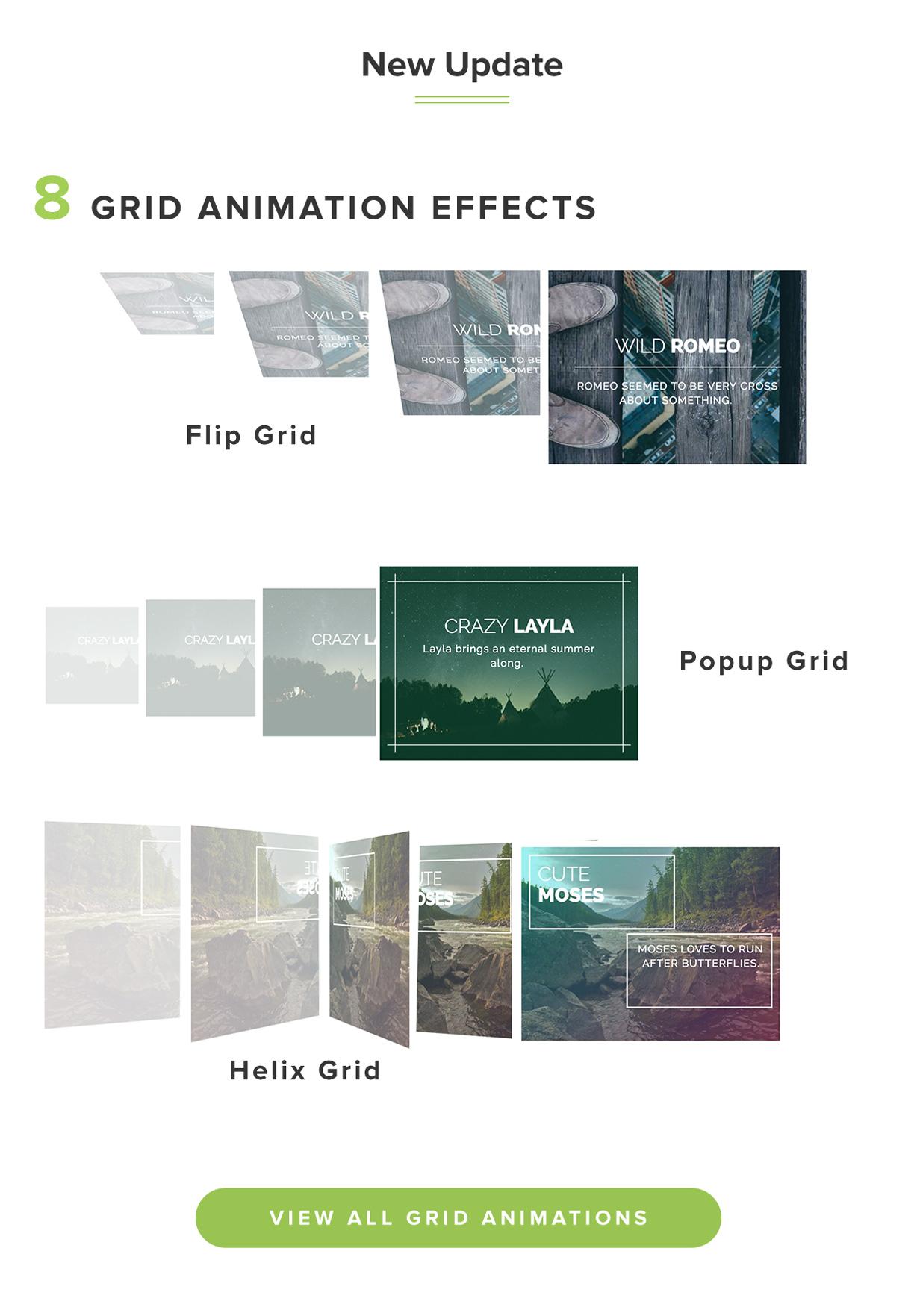 Marvelous Hover Effects | 用于可视化编辑器的图片悬停特效插件-云典网